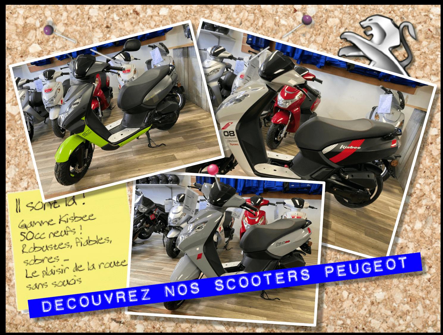 Découvrez nos Scooters Kisbee 50cc